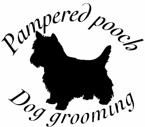 dog grooming heanor langleymill